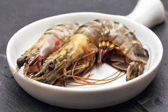 Raw Giant Prawns Royalty Free Stock Photos