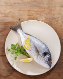 Raw gilt head bream. On a dish with lemon and parsley Stock Image