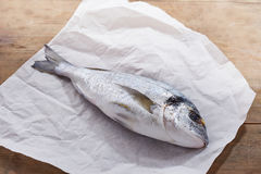 Raw gilt head bream. On white paper Stock Images