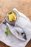Raw gilt head bream. On white paper with lemon and parsley Stock Images