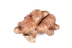 Raw ginger Royalty Free Stock Photo