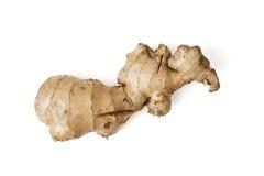 Raw ginger Royalty Free Stock Image