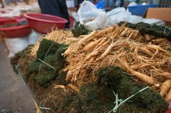Raw ginseng displayed on a grass. royalty free stock photos