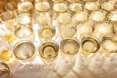 Raw of glasses filled with champagne. royalty free stock photography