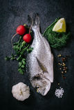Raw Glithead Fish Royalty Free Stock Image