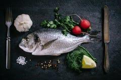 Raw glithead fish Stock Images