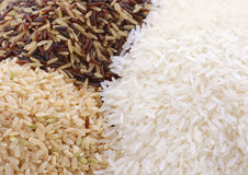 Raw gluten-free rice cereal ingredient. Stock Photography
