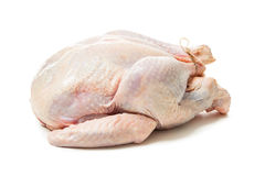 Raw goose Stock Images