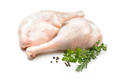 Raw goose legs with herbs Stock Images