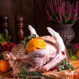 Raw goose in marinade Stock Images
