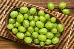 Raw Gooseberries Royalty Free Stock Images