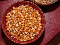 Raw Grains of Corn inside Bowl. Orange Kernels Top View Royalty Free Stock Photography