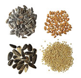 Raw Grains Set Royalty Free Stock Images