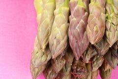 Raw green asparagus close-up Royalty Free Stock Image