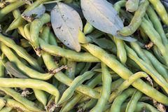 Raw green beans. On a market Royalty Free Stock Photography