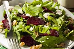 Raw Green Beet and Arugula Salad Royalty Free Stock Images