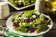 Raw Green Beet and Arugula Salad Royalty Free Stock Image