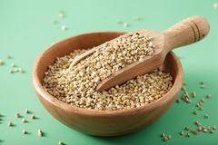 Raw green buckwheat healthy ingredient Royalty Free Stock Photos