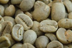 Raw Green Coffee Bean. Closeup of Raw Green Coffee Beans Royalty Free Stock Photography