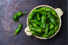 Raw green hot mexican peppers jalapeno pimientos padron spanish tapas Stock Images