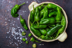 Raw green hot mexican peppers jalapeno pimientos padron spanish tapas Stock Image