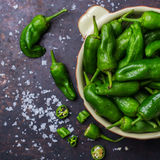 Raw green hot mexican peppers jalapeno pimientos padron spanish tapas Royalty Free Stock Image