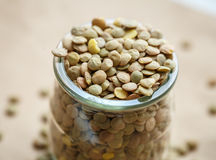 Raw green lentils in a glass jar Stock Photography