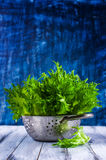 Raw green lettuce. With water drops. Selective Focus Stock Images