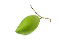 Raw green mango with stem on white. Background Stock Photos