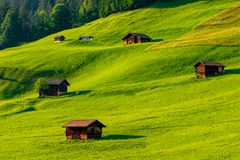 Raw green meadow and several barns bathed by beautiful sunset ligthing. royalty free stock images