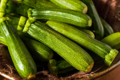 Raw Green Organic Baby Zucchini Stock Images