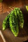 Raw Green Organic Bitter Melon Stock Photos