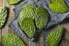Raw Green Organic Cactus Leaf Fruit Royalty Free Stock Photo