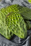 Raw Green Organic Cactus Leaf Fruit Royalty Free Stock Photography