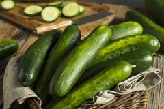 Raw Green Organic Cucumbers royalty free stock image