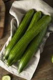 Raw Green Organic European Cucumbers Stock Photos