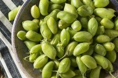 Raw Green Organic Garbanzo Beans Royalty Free Stock Photography
