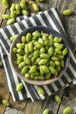 Raw Green Organic Garbanzo Beans Stock Photography