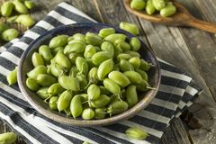 Raw Green Organic Garbanzo Beans Stock Image