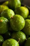 Raw Green Organic Key Limes Royalty Free Stock Image