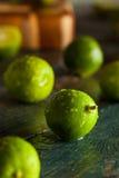 Raw Green Organic Key Limes Royalty Free Stock Photos