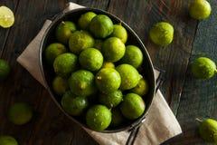Raw Green Organic Key Limes Royalty Free Stock Photography