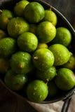 Raw Green Organic Key Limes Stock Photography
