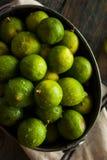 Raw Green Organic Key Limes Royalty Free Stock Photo