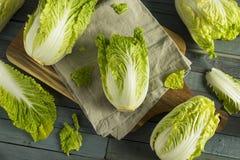 Raw Green Organic Napa Cabbage. Ready to Use stock photo