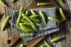 Raw Green Organic Okra Vegetables. Ready to Cook Royalty Free Stock Photography