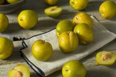 Raw Green Organic Pluots Stock Photo
