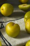 Raw Green Organic Pluots Stock Image