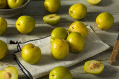 Raw Green Organic Pluots Stock Photography