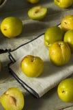 Raw Green Organic Pluots Stock Photos